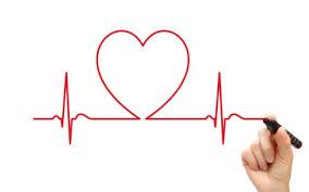 Cardio et filières énergétiques